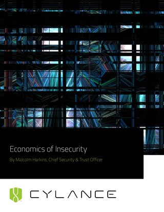 Economics of Insecurity