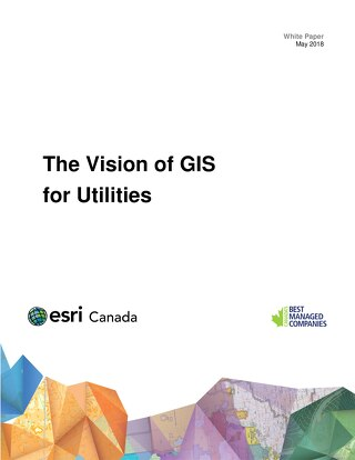 The Vision of GIS for Utilities