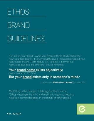 Ethos Brand Guide