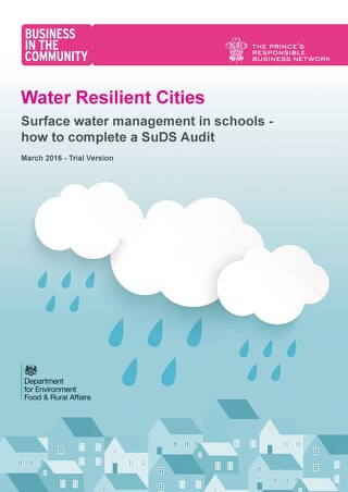 SuDS Audit Guide