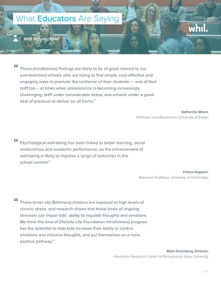 Industry Brief: What Educators Are Saying