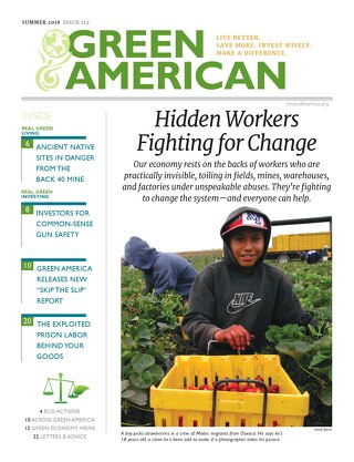 GreenAmerican #112, Summer 2018