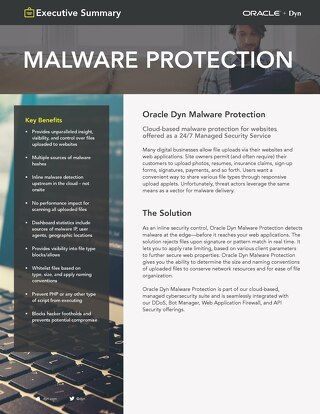 Malware Protection Executive Summary