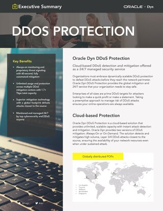 DDoS Executive Summary