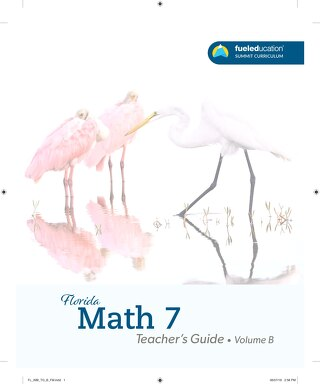 FLORIDA Math 7 Teacher's Guide Vol. B