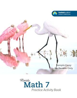 FLORIDA Math 7 Practice Activity Book