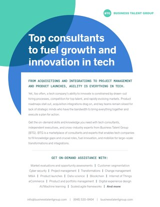 Business Talent Group Key Strengths: Tech