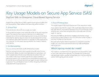 主要使用模型安全应用服务(SAS)