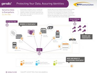 Gemalto SafeNet Data Protection Overview