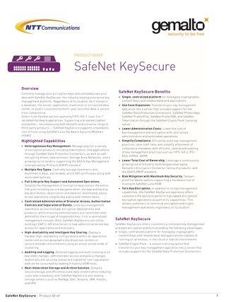 Safe Net Key Secure