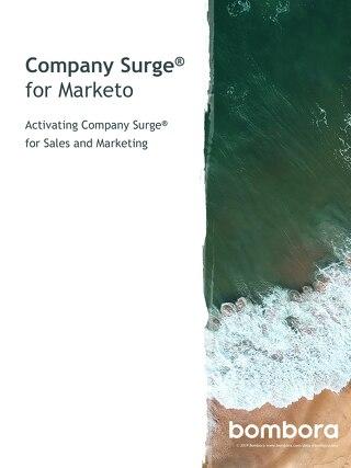 Company Surge® for Marketo - Activation guide