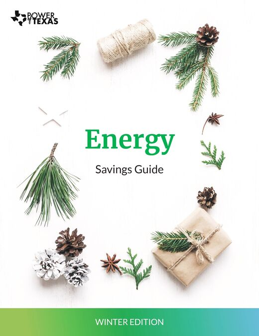 Power of Texas Winter Savings Tips Guide