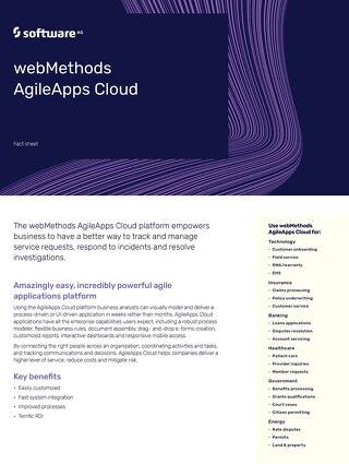 Facts about webMethods Dynamic Apps Platform, Agile Edition