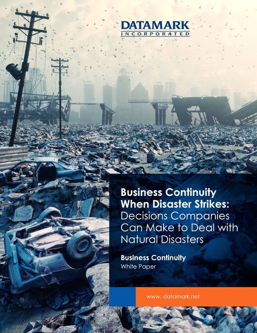 Business Continuity When Disaster Strikes: Decisions Companies Can Make to Deal with Natural Disasters
