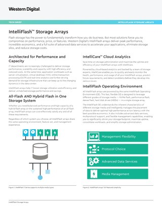 Tech Brief: IntelliFlash Storage Arrays