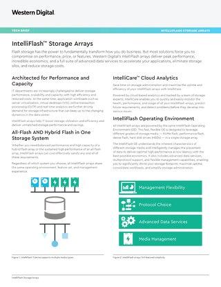 Tech Brief: IntelliFlash Storage Arrays