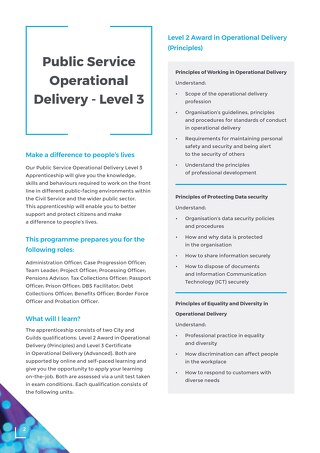 Operational Delivery Level 3 Overview