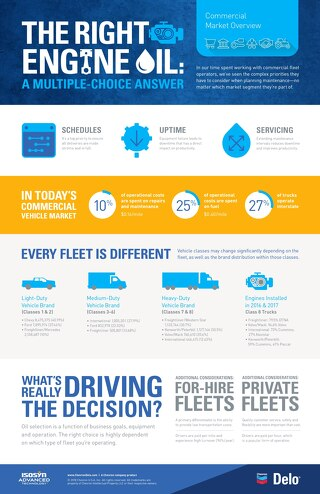 Delo Overview Infographic