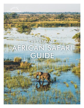 ZE Feb-2019_Africa_Guide