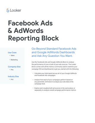 Facebook & AdWords by Segment