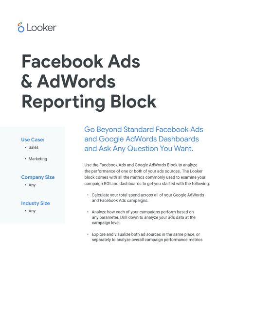 Facebook & AdWords by Segment
