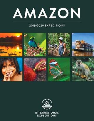 Amazon 2019-2020
