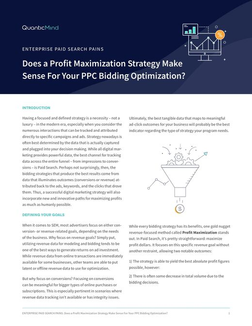 Does a Profit Maximization Strategy Make Sense For Your PPC Bidding Optimization? [Pains Series Doc]