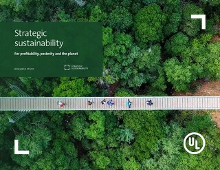 Strategic Sustainability: For Profitability, Posterity and the Planet
