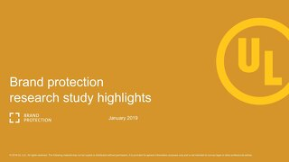 Brand Protection Research Summary Presentation