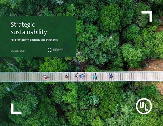 Strategic Sustainability Research Study