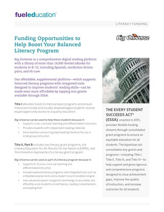 Literacy Funding Flyer