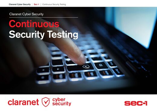 Continuous Security Testing