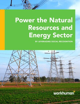 Power the Natural Resources and Energy Sector by Leveraging Social Recognition