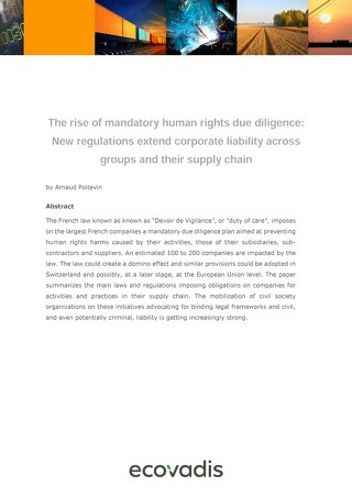 The Rise of Mandatory Human Rights Due Diligence in the Supply Chain