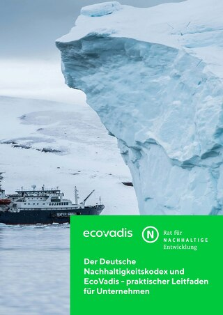 The Sustainability Code and EcoVadis – A Practical Guide