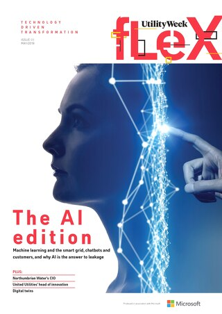 Flex May 2019