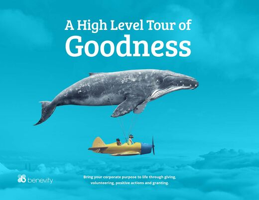 A High Level Tour of Goodness