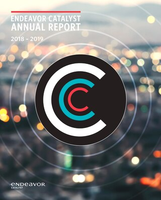 2019 Endeavor Catalyst Annual Report