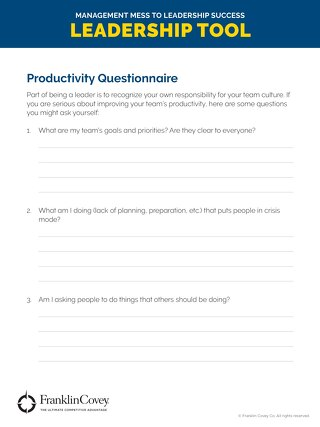 Productivity Questionnaire - Tool