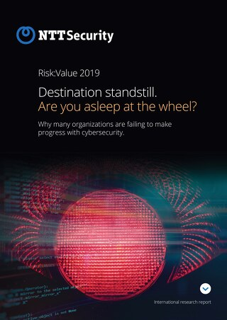 RiskValue:Report 2019