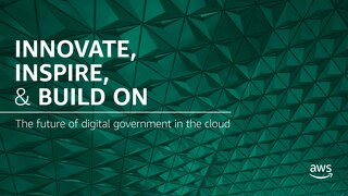 eBook: Digital Government
