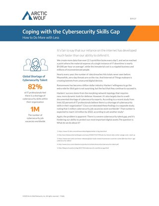 Coping with the Cybersecurity Skills Gap