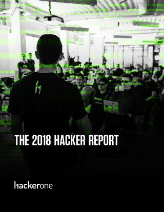 The 2018 Hacker Report