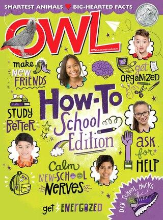 OWL - September 2019
