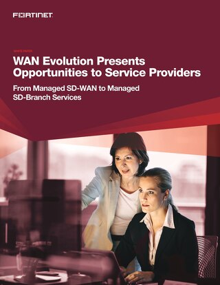 WAN Evolution Presents Opportunities to Service Providers