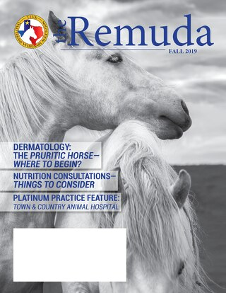 2019 Fall Edition - The Remuda