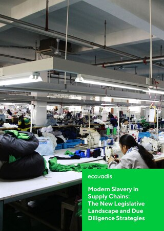 Modern Slavery In Supply Chains: New Legislative Landscape and Due Diligence Strategies