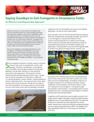 Saying Goodbye to Soil Fumigants In Strawberry Fields