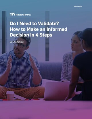 Do I Need to Validate? How to Make an Informed Decision in 4 Steps