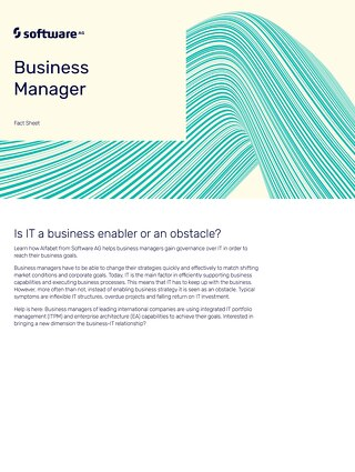 Business Manager: Is IT business enabler or an obstacle?